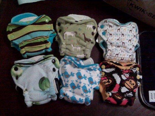 graham bear wear diapers