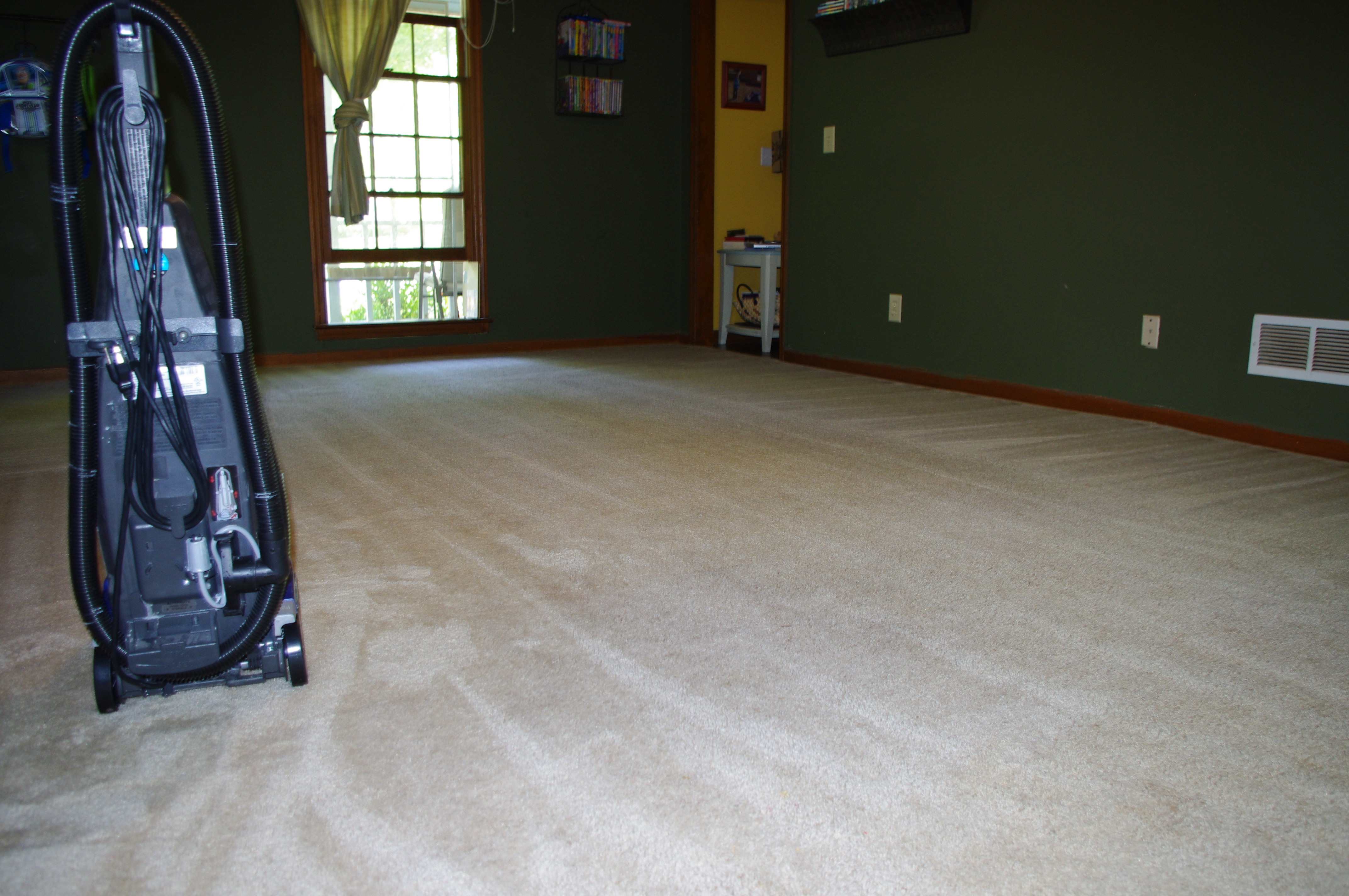 Natural And Clean Dry Carpet Cleaner