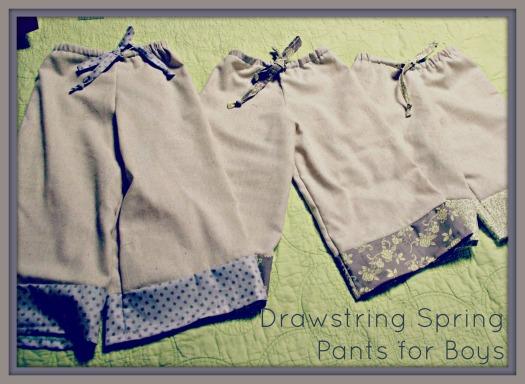 DS Pants 2