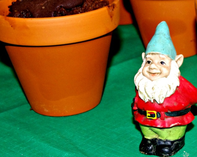 7 Party mini gnome