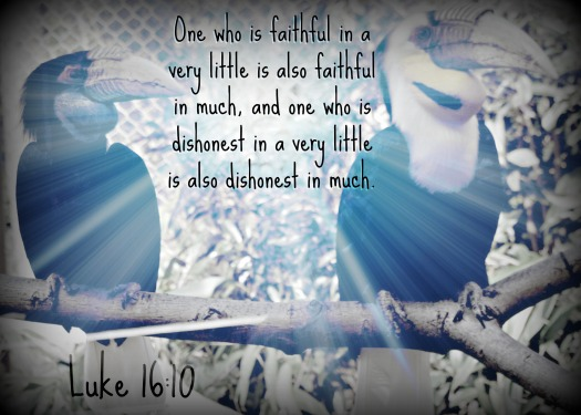 faithful weekly verse