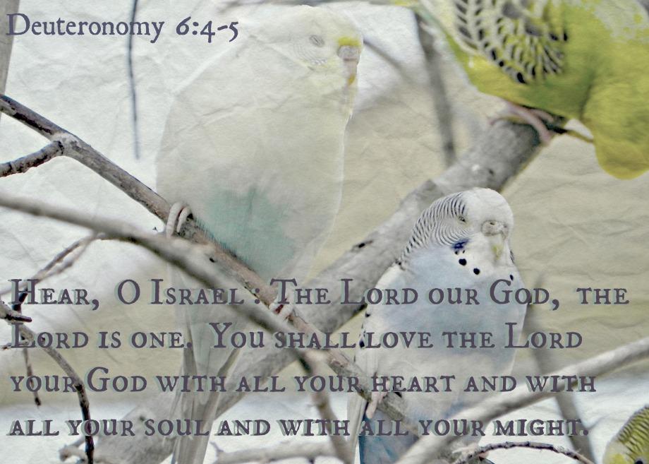 love verse of the week