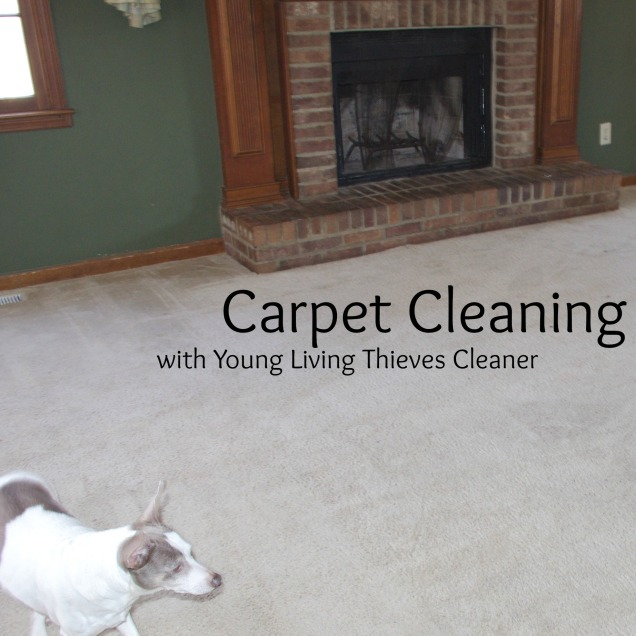 Carpet Cleaning With Young Living Thieves Cleaner Notes